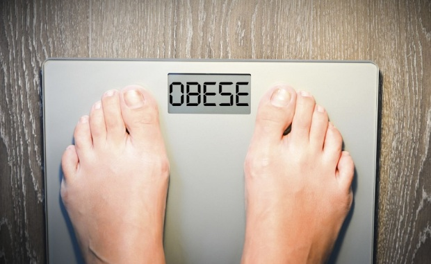 obese scale